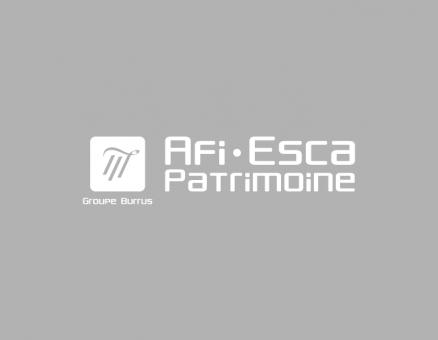 AFI ESCA PATRIMOINE