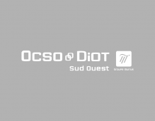 DIOT SUD OUEST OCSO